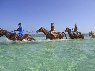 Excursion équestre en Jamaïque