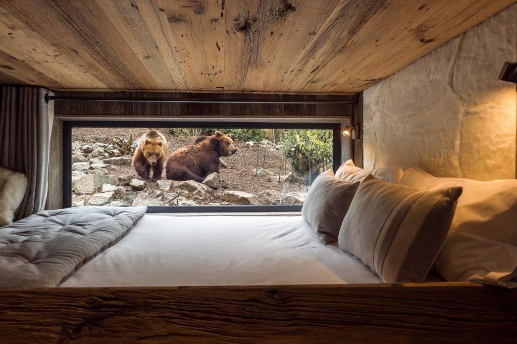 Chambre à coucher avec baie vitrée donnant sur des grizzlys