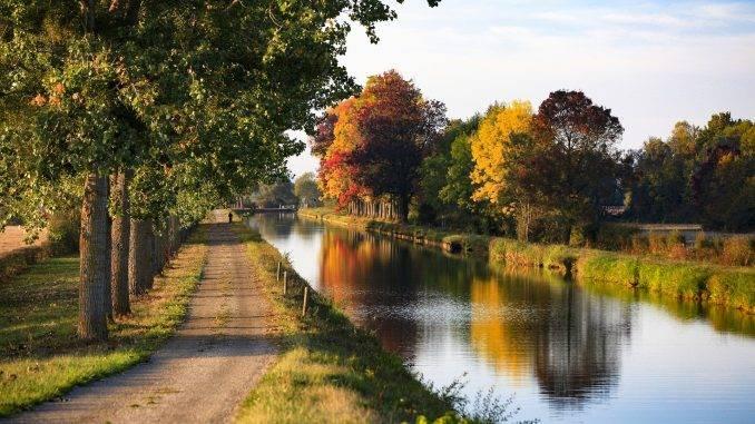 Route de campagne le long d'un canal