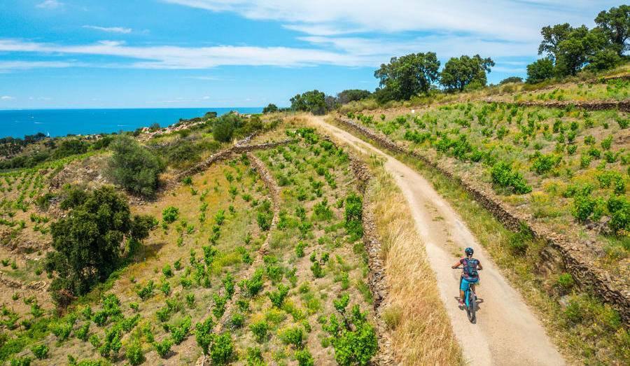 Personne à vélo sur une route de campagne avec la mer en fond