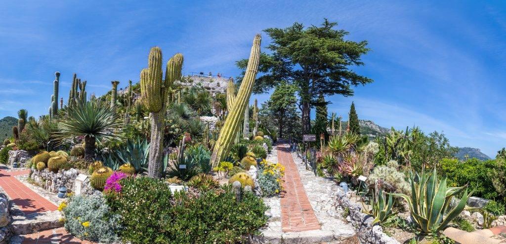 Jardin exotique de la ville d'Eze